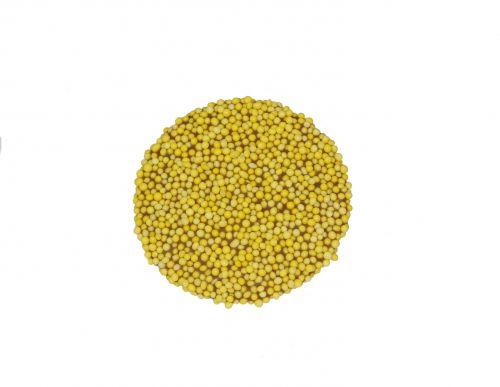 9180 Paasmusket flikken geel